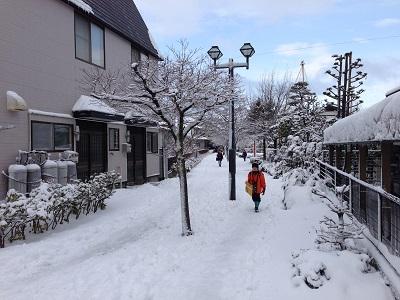 14.03.14-雪・雪・雪・・・2