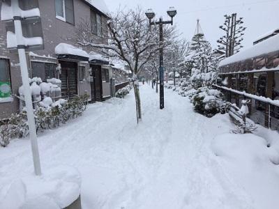 15.03.11-冬戻り3